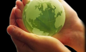 produse-ecologice