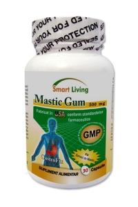 mastic-gum-BIG
